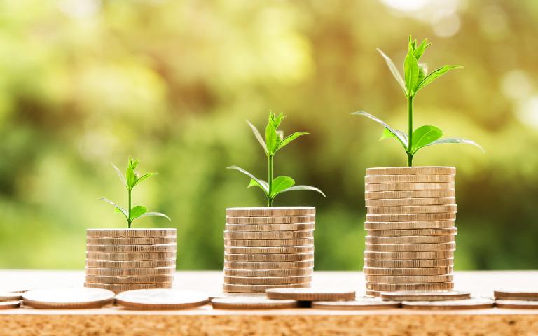 ツヴァイのお得な料金プランとコストパフォーマンスを解説